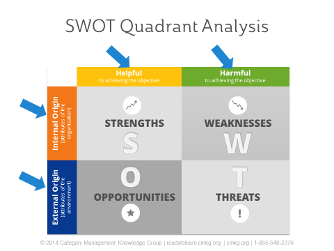Using a SWOT Analysis In Your Category Assessment