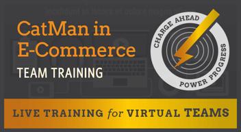 VCT-CatMan-in-E-Commerce-Team-Training
